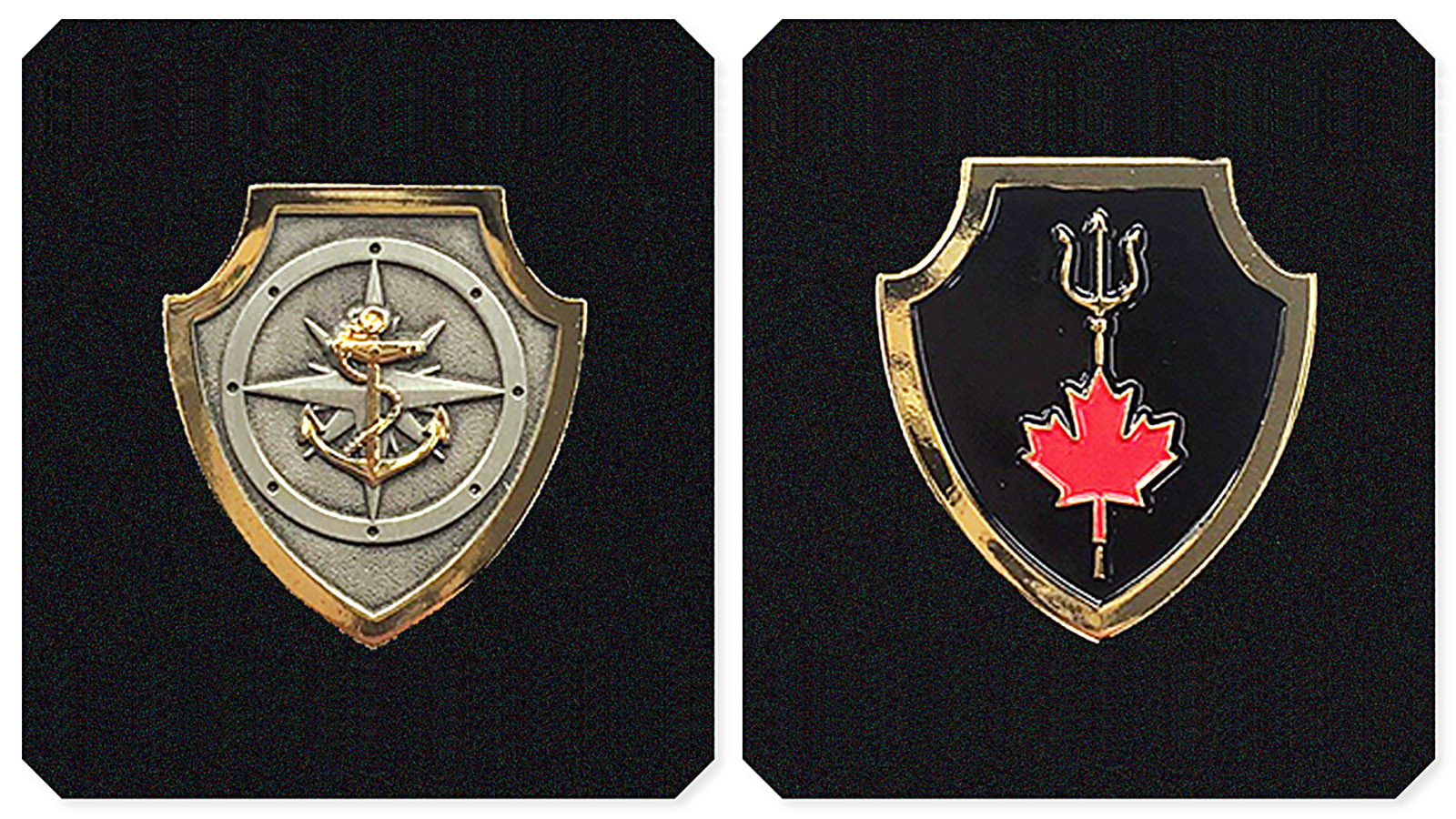 slide - RCN Naval Boarding Party badges